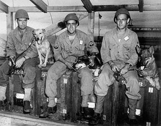 service dog training manual pdf