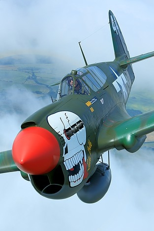 For Sale Rare P 40m Kittyhawk Represented As Quot Lulu Belle